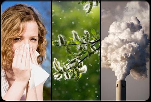 factores medioambientales que favorecen el asma