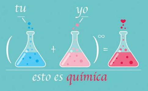 el amor es la consecuencia de una serie de reacciones quimicas en el organismo