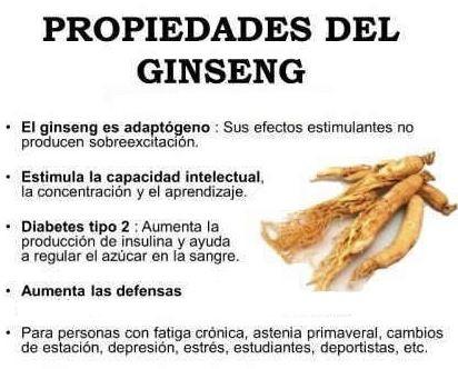 propiedades del ginseng