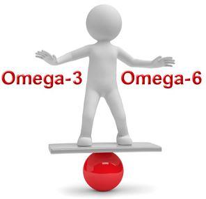 es fundamental para nuestra salud tener un buen equilibrio entre los acidos grasos omega-3 y los omega-6