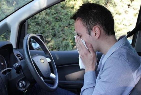 mientras conduces manten las ventanillas subidas para evitar que entre polen
