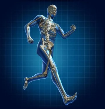 caminar es muy beneficioso para los huesos