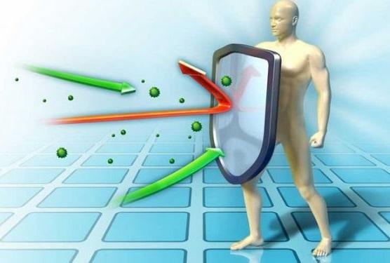 caminar mejora nuestro sistema inmunologico