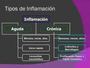 existen distintos tipos de inflamaciones
