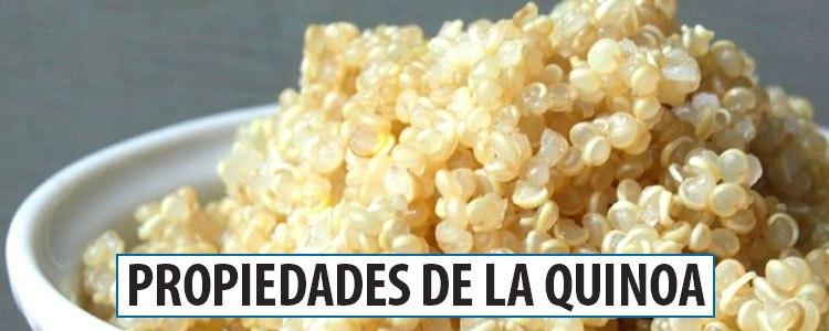 propiedades que tiene la quinoa