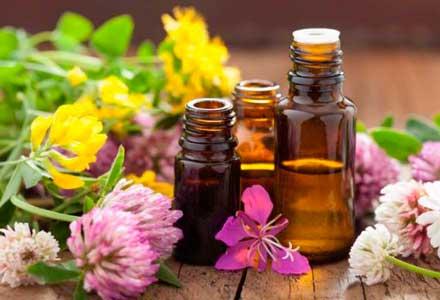 beneficios de la cosmetica natural ecologica