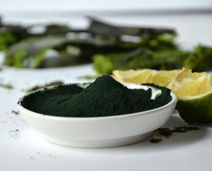propiedades del alga chrorella