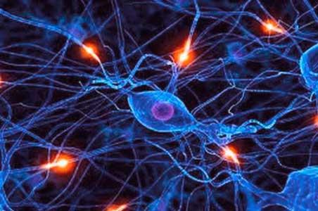 una de las causas del trastorno maniaco depresivo pueden ser los desequilibrios quimicos en el cerebro