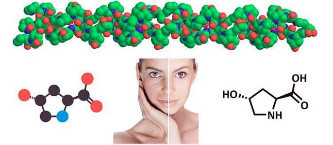 el colageno es una proteina encargada de dar firmeza y elasticidad a la piel
