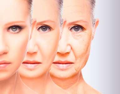 la piel va envejeciendo por la edad