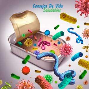 la listeria la provocan alimentos contaminados