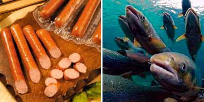 salchichas y salmon cultivado son potencialmente cancerigenos