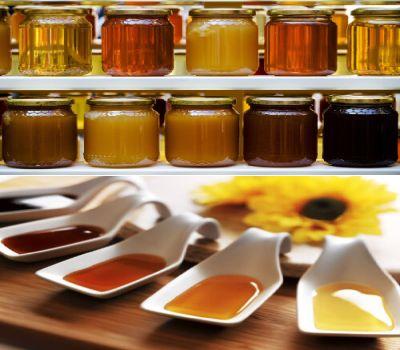 existen una cantidad innumerable de tipos de miel